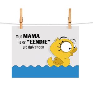 Bonteboel Illustraties Webshop Ansichtkaarten MamaEendjeUitDuizenden
