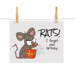 Bonteboel Illustraties Webshop Ansichtkaarten RatsIForgot